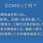 けん ecomo 志村